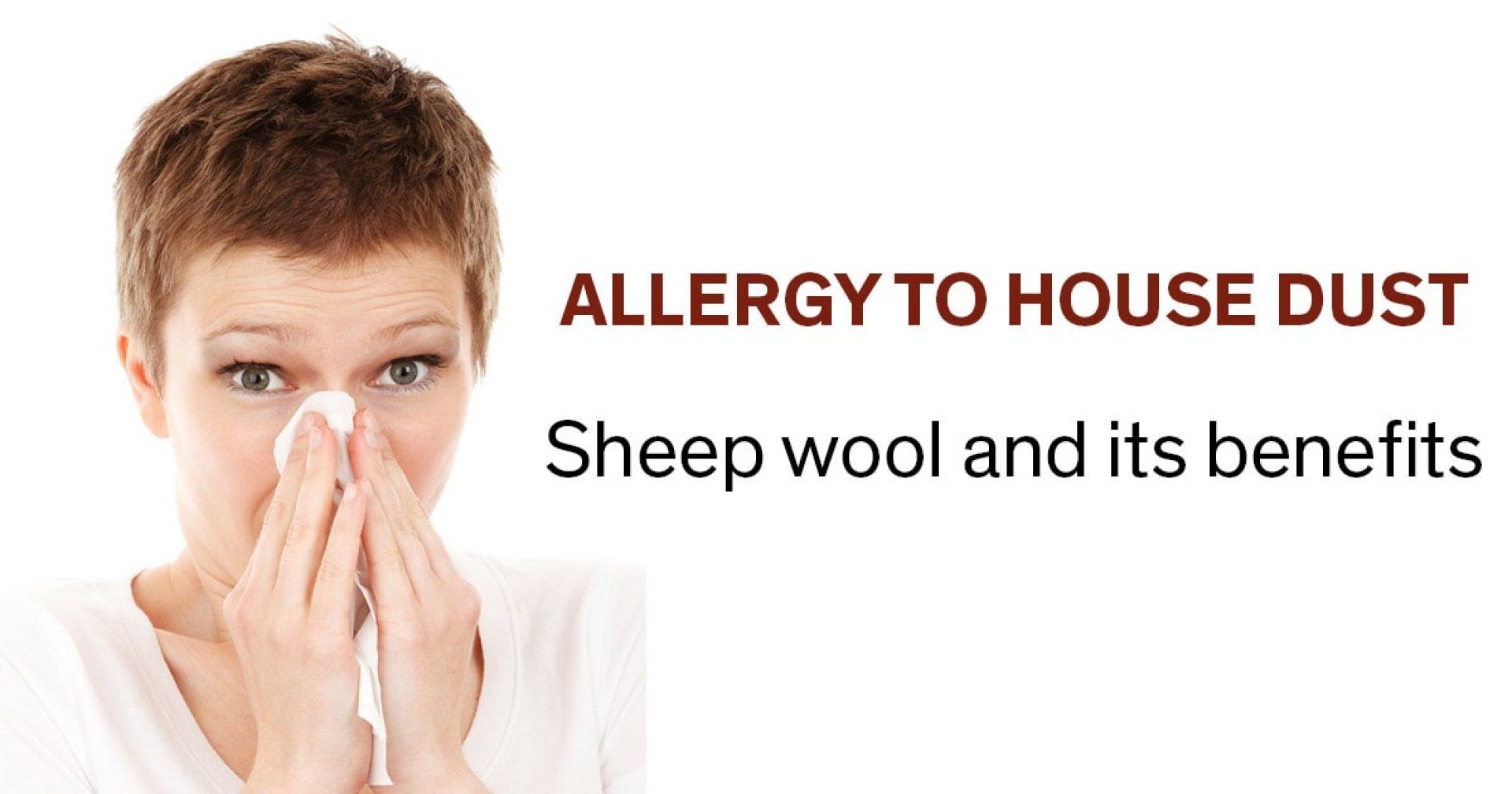 Allergiker_ver 2 EN